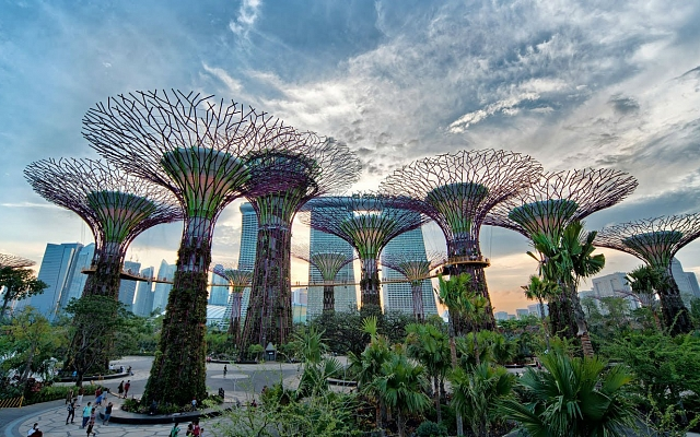 Сады «Gardens by the Bay» Сингапур